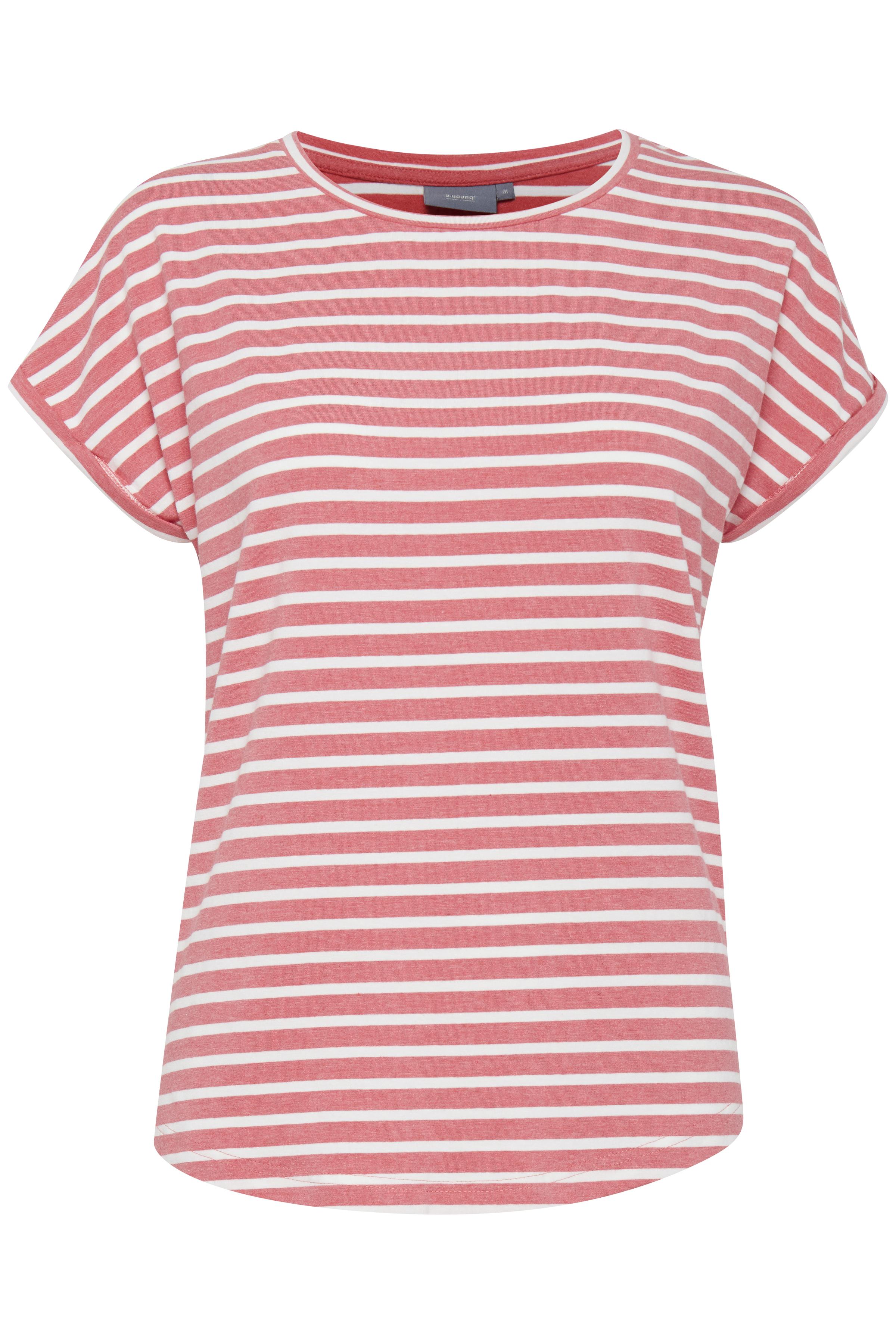 Striped Sunkist Coral Mel.
